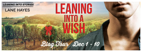Leaning Into A Wish Tour Banner
