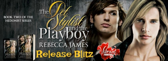 The PetStylist And The Playboy Blitz Banner