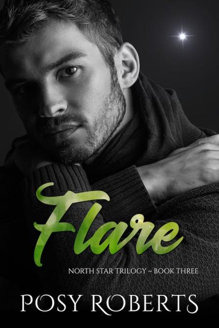 Flare-NS3-PosyRoberts