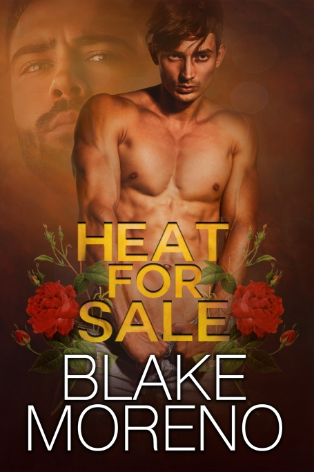 Copy of heat for sale high res.jpg