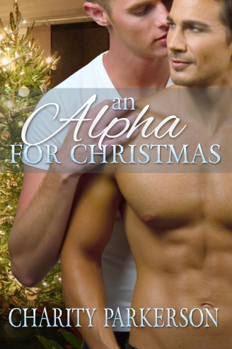An Alpha for Christmas front cover.jpg