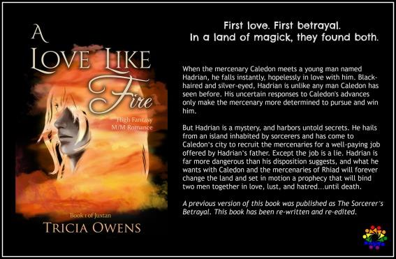 A LOVE LIKE FIRE BLURB.jpg