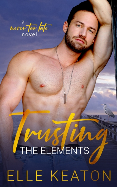 Trusting the Elements Ebook.jpg