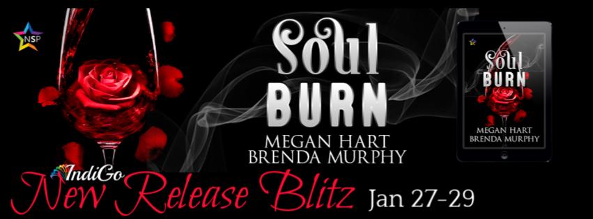 Sould Burn Banner