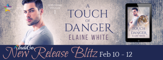 A Touch of Danger Banner