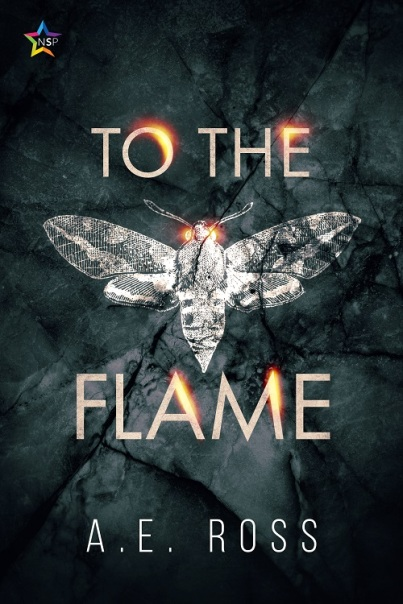 TotheFlame-f500