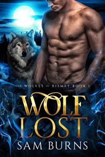 Wolf Lost cover