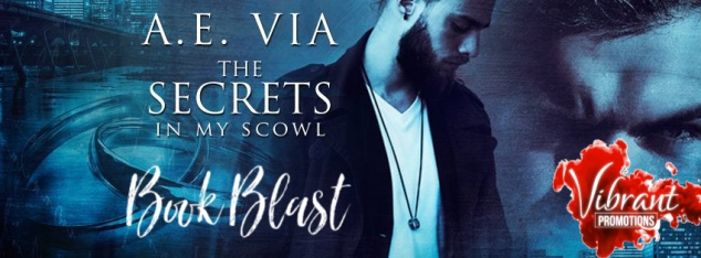 The Secrets in My Scowl Book Blast Banner