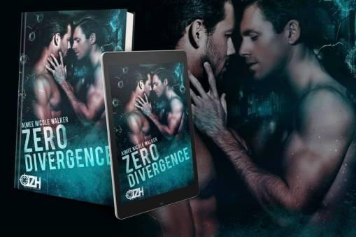 Zero Divergence Graphic 1