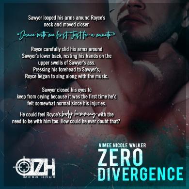 Zero Divergence teaser 2