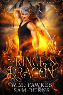 ThePrincesDragon-cover