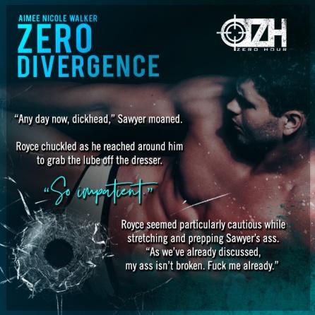 Zero Divergence teaser 3