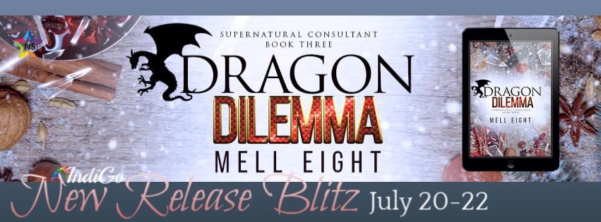Dragon Dilemma Banner