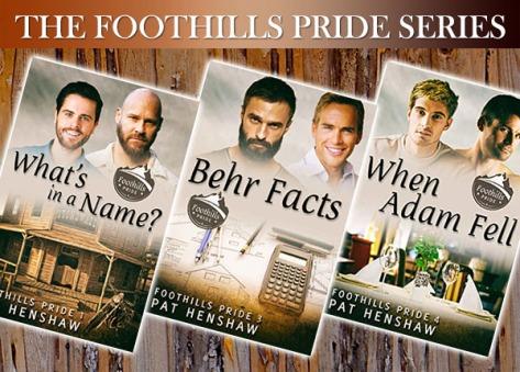 BANNER3 - Foothills Pride Series
