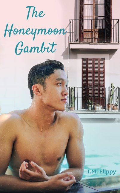The-Honeymoon-Gambit-Kindle